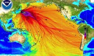Fukushima071313