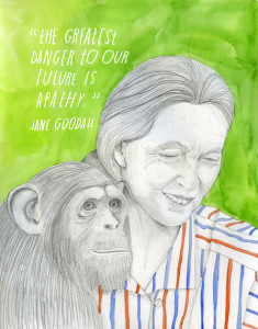 Portrait of Jane Goodall by Lisa Congdon from our collaborative project, 'The econstructionist.'
