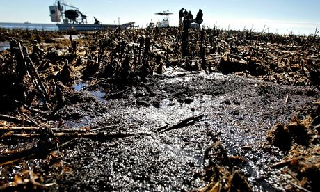 Oil is deposited along dead marsh land near Bay Jimmy in Port Sulphur, Louisiana, in January 2011, 10 months after the spill. The clean-up is ongoing. Photograph: Getty Images