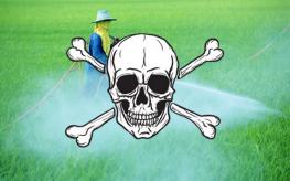 pesticides_toxic-263x164 monsanto