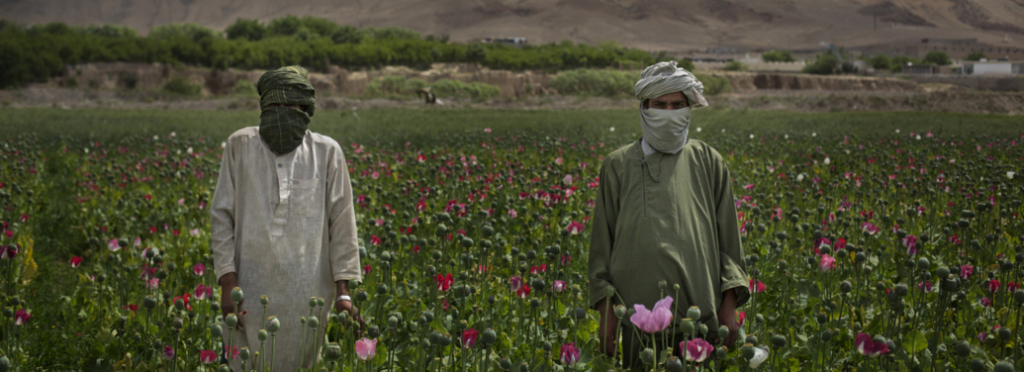 Afghanistan produced 6,400 tons of opium in 2014, about 90 percent of the world's supply.