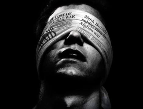 media propaganda assange