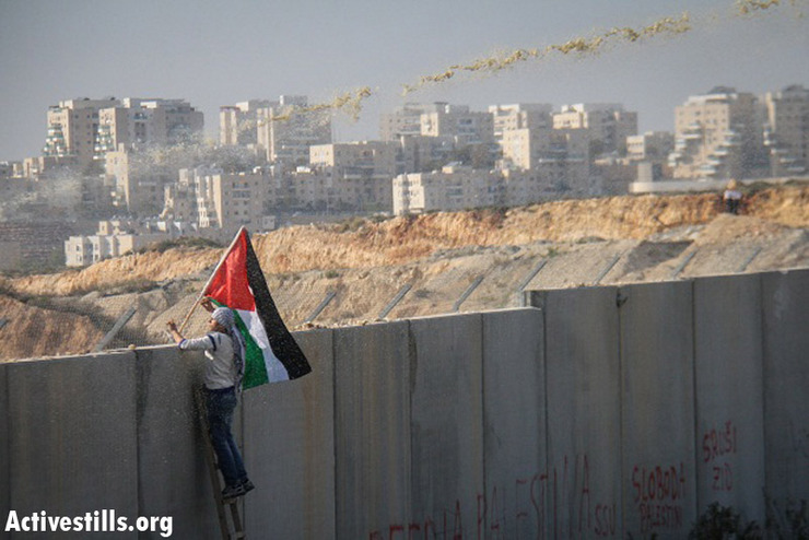 A demonstrator waves a Palestinian flag as he looks over the wall during the weekly protest against the wall and the occupation in the West Bank village of Bil'in, January 4, 2012. (Photo by: Guest photographer Hamde Abu Rahma/ Activestills.org)