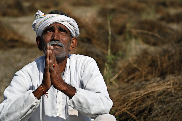 A farmer looks skyward as he sits amid his storm-damaged wheat crop in the Indian state of Rajasthan last week. (AP / Deepak Sharma)