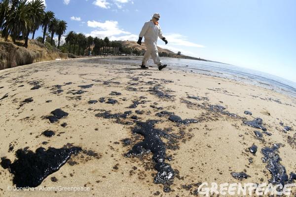 california oil spill greenpeace4