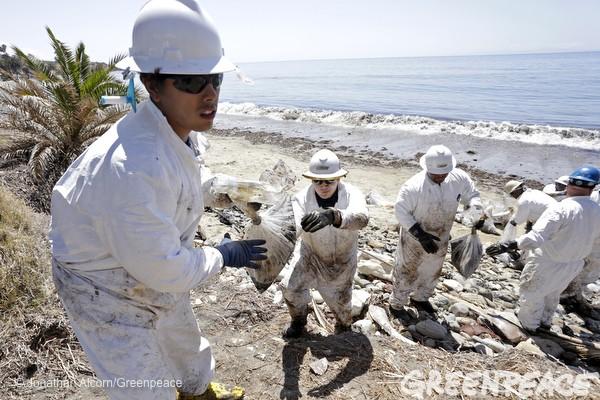 california oil spill greenpeace5