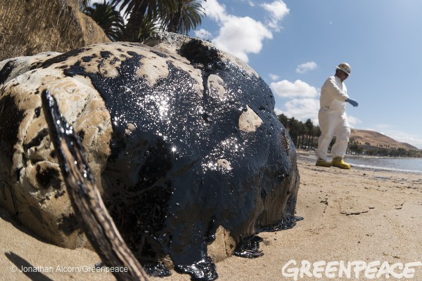 california oil spill greenpeace7