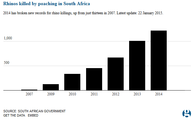 rhino-poaching-trend south africa animal extinction