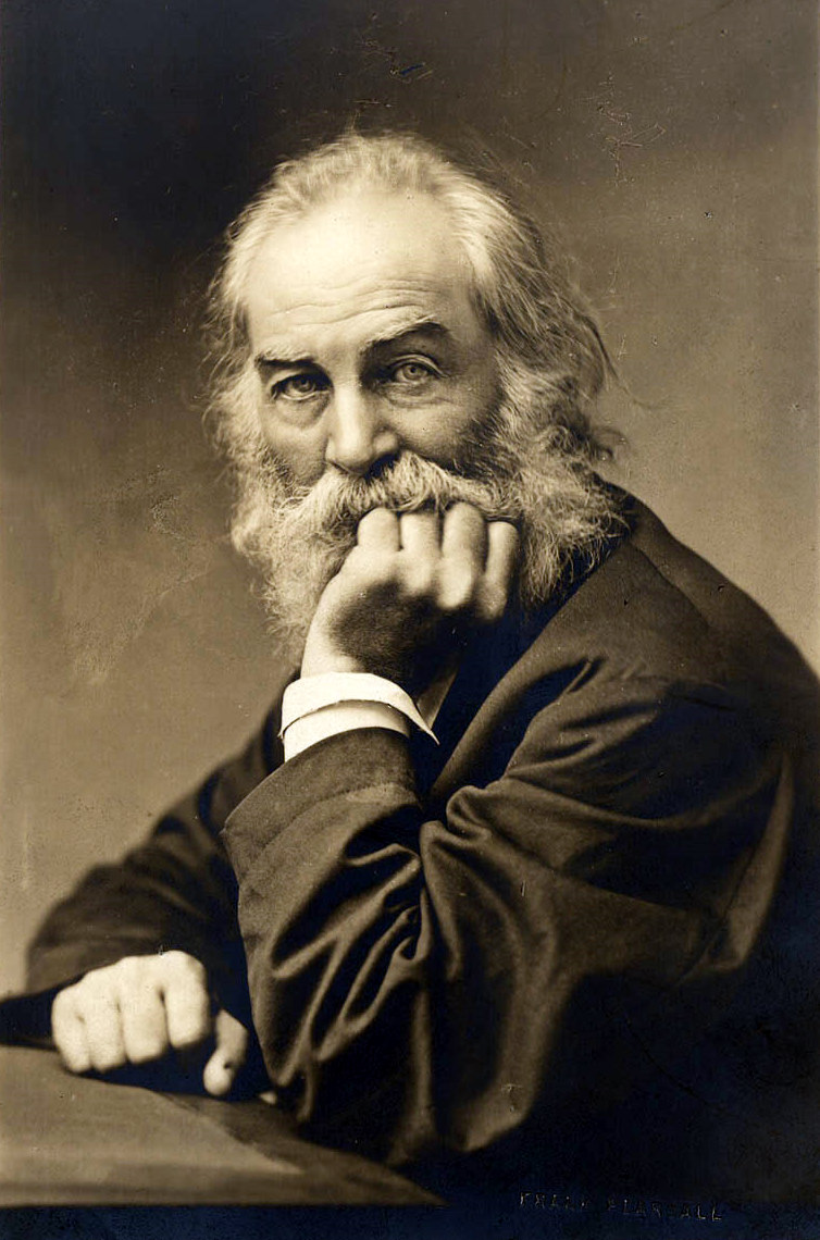 an analysis of walt whitman challenging cultural norms in the nineteenth century The 19th century was a century karl weierstrass and others carried out the arithmetization of analysis for functions of walt whitman publishes the first.