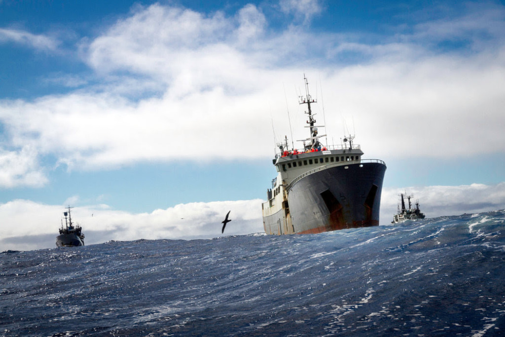The Thunder, shadowed by the Bob Barker and the Sam Simon, in February. CreditSimon Ager/Sea Shepherd Global