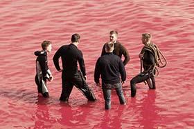 Whale hunters in a sea of red. Photo: Sea Shepherd/Eliza Muirhead
