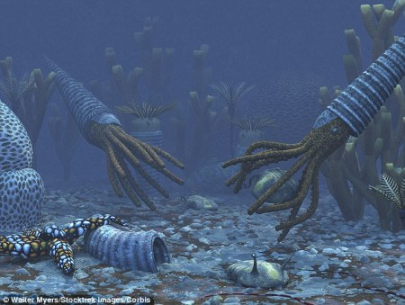 500 million years ago, there was no animal life on dry land. These creatures were the most advanced life forms on Earth at that time.