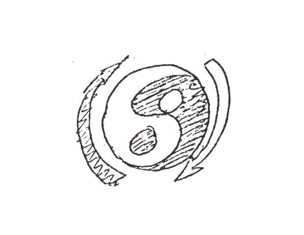 brucelee_drawing yin yang