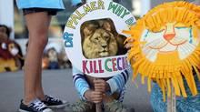 cecil lion dr palmer killing south africa