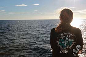 Capt. Wyanda Lublink watches over a pod of dolphins as Sea Shepherd leads them safely back out to open sea. Photo: Sea Shepherd