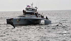 File photo: Sea Shepherd has been protecting dolphins of the Faroe Islands since the early 1980s. Photo: Sea Shepherd