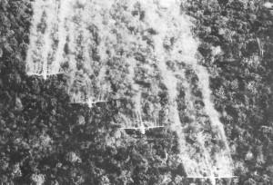 US spraying Agent Orange in Vietnam.