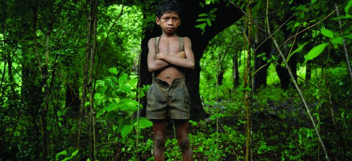 Boy standing in a green forest. Image credit: Jason Taylor, The Source Project