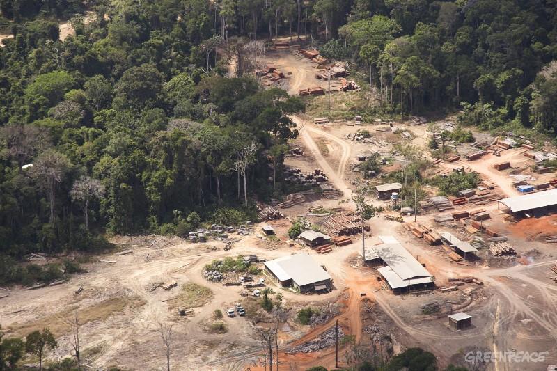 Madeireira Iller, envolvida com o comércio de madeira ilegal, no Pará (© Greenpeace/Otávio Almeida)