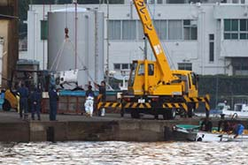 One of the two Risso's dolphins is transferred via sling into a transport truck. Photo: Sea Shepherd