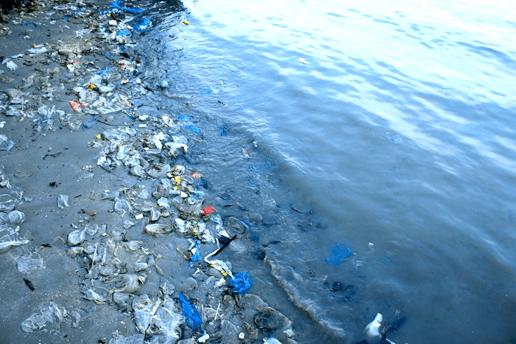 Plastic waste and other garbage on Rayong beach, Thailand. Photo credit: relax_gap / Shutterstock.com