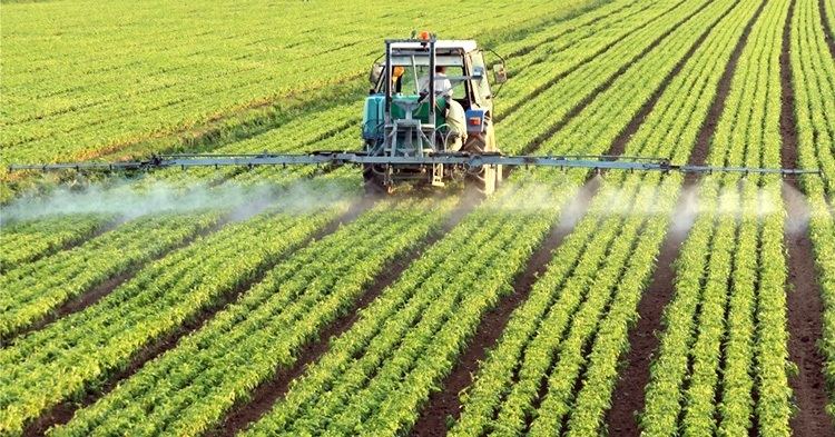 Our current modes of production and consumption are contributing to what climate change scientists term anthropogenic emissions—originating from human activity. Photo credit: The Corvallis Advocate