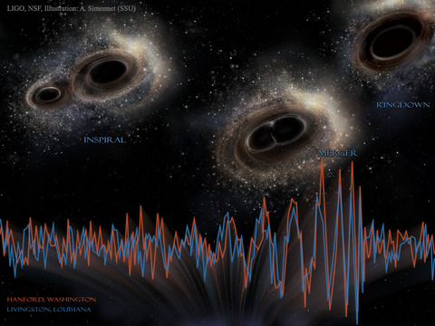 The three stages of the collision of two black holes - inspiral, merger and ringdown - illustrated above. The signal detected by the two LIGO instruments is superimposed across the bottom. Credit: LIGO, NSF, Aurore Simonnet (Sonoma State U.)