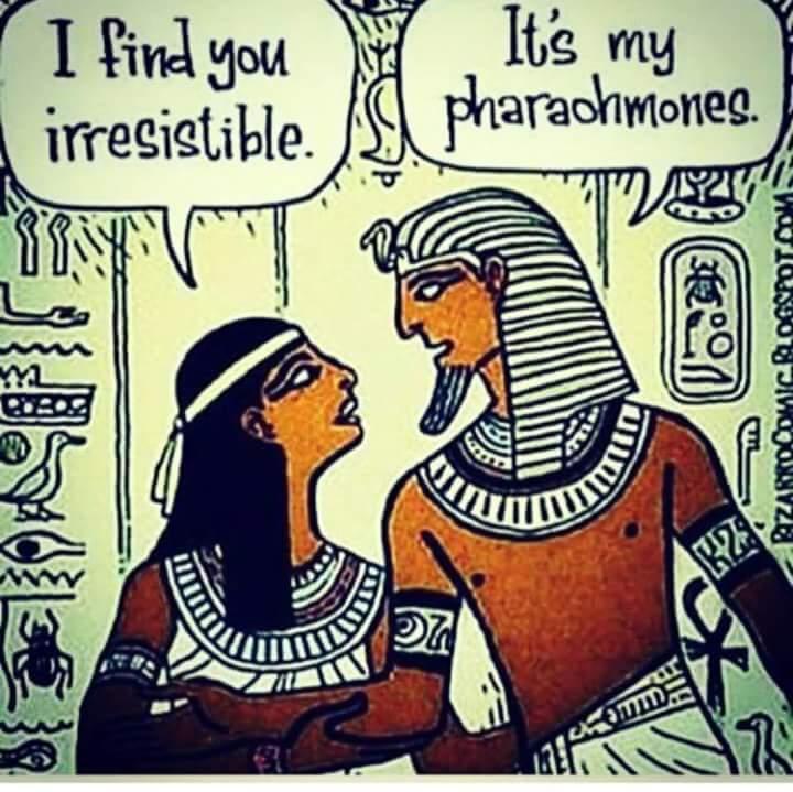 joke Pharaoh