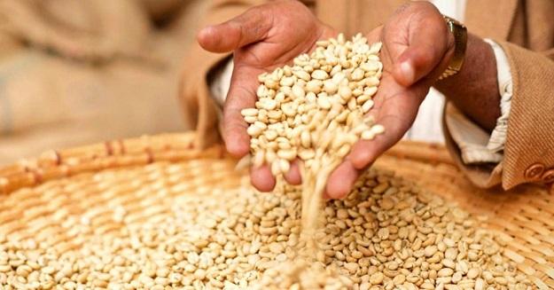 0-1-0-.seeds_africa_2 sementes