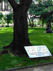 Hiroshima Tree at Tavistock Square, London. Photo © Global Poetry.