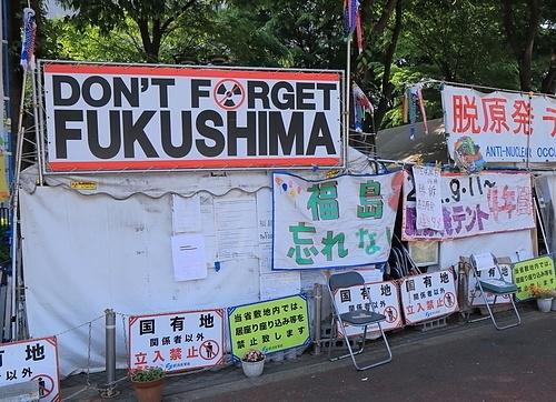 TK Kurikawa | Shutterstock.com