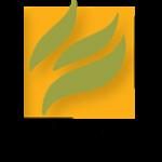 logo mintpressnews