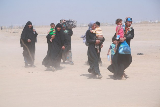 Families from Falluja, Iraq, continue to flee from the city as fighting continues. Credit: ©UNHCR/Anmar Qusay