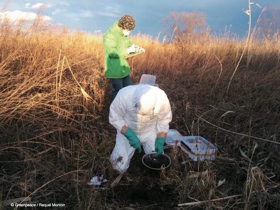 Greenpeace sediment sampling in Abukuma river, Miyagi prefecture, February 2016. The Abukuma has a 5,172km2 catchment15 which is largely in Fukushima prefecture, before entering the Pacific ocean in Miyagi prefecture. Greenpeace / Raquel Monton