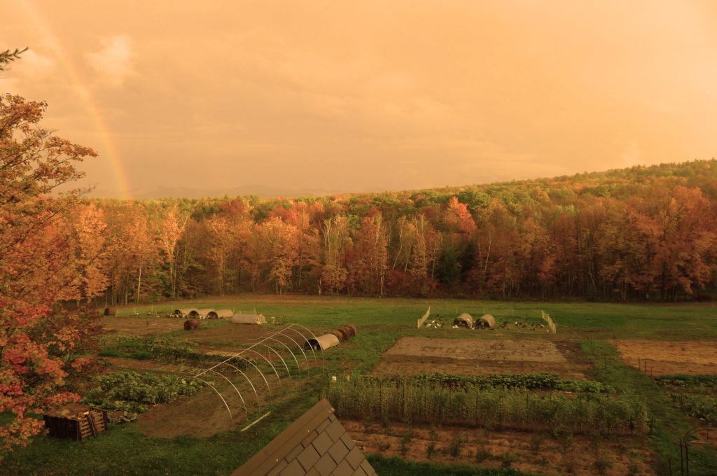 farmland agricultura