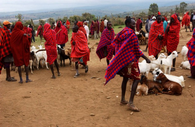 Maasai pastoralists, who participate in a farmer field school, are selling animals at a local market in Narok, Kenya. Indigenous peoples have a key role to play in addressing climate change. Credit: FAO