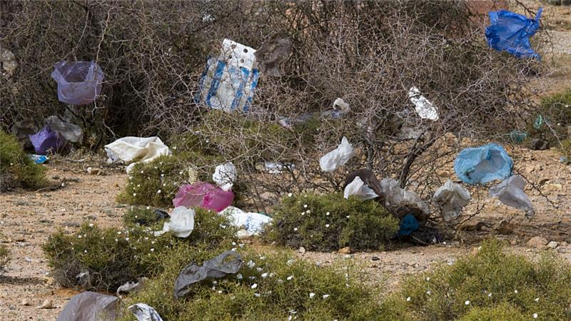 Morocco is the second-largest plastic bag consumer after the United States [Getty Images]