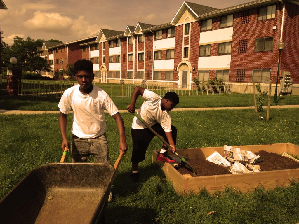 wheelbarrow gardening jardineiro carrinho de mao