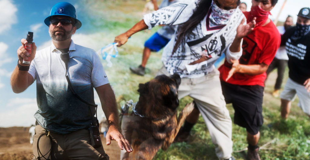 http://countercurrentnews.com/2016/09/police-do-nothing-mercenaries-protesters-dogs/