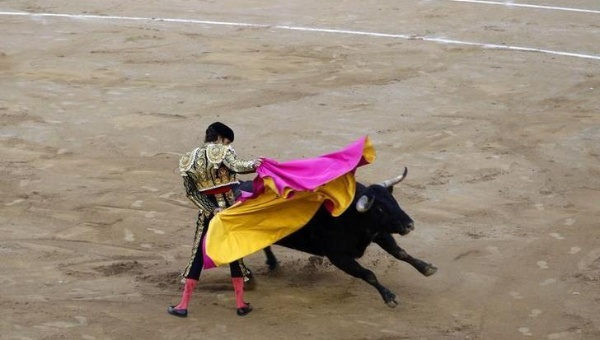 Spanish bullfighter Jose Tomas performs a pass to a bull during the last bullfight at Monumental bullring in central Barcelona Sept. 25, 2011. Photo: Reuters