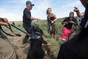 Native American protesters and their supporters are confronted by militarized private security forces with dogs during a demonstration against work being done for the Dakota Access Pipeline, Sept 3, 2016. Robyn Beck / AFP / Getty Images