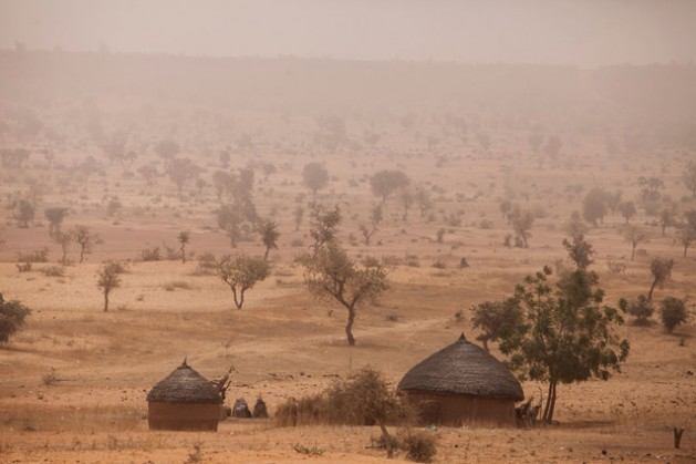 The dry Sahelian semidesertic region around Tera, Niger. The proteins, vitamins, and micronutrients consumed in fish captured during the rainy seasons can make a major difference to the lives of these vulnerable rural communities, particularly if the fish can be dried and properly stored to be consumed throughout the year. Credit: FAO