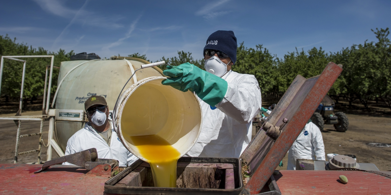 TRANSCEND MEDIA SERVICE » Poison Fruit: Dow Chemical Wants