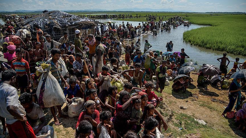 TRANSCEND MEDIA SERVICE » Rohingya Meeting to Push for