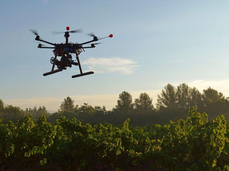 TRANSCEND MEDIA SERVICE » Reforestation Drones Drop Seeds
